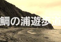 太平洋を満喫ヽ(*´▽)ノ♪鯛の浦遊歩道を散策
