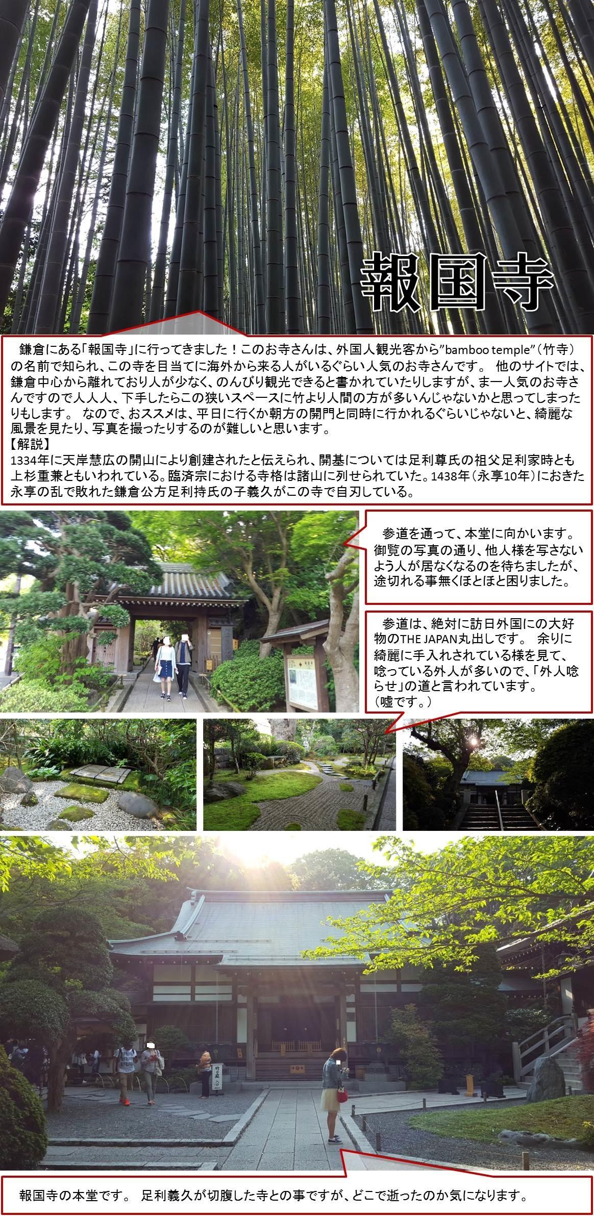 """鎌倉にある「報国寺」に行ってきました!このお寺さんは、外国人観光客から""""bamboo temple""""(竹寺)の名前で知られ、この寺を目当てに海外から来る人がいるぐらい人気のお寺さんです。 他のサイトでは、鎌倉中心から離れており人が少なく、のんびり観光できると書かれていたりしますが、まー人気のお寺さんですので人人人、下手したらこの狭いスペースに竹より人間の方が多いんじゃないかと思ってしまったりもします。 なので、おススメは、平日に行くか朝方の開門と同時に行かれるぐらいじゃないと、綺麗な風景を見たり、写真を撮ったりするのが難しいと思います。  【解説】  1334年に天岸慧広の開山により創建されたと伝えられ、開基については足利尊氏の祖父足利家時とも上杉重兼ともいわれている。臨済宗における寺格は諸山に列せられていた。1438年(永享10年)におきた永享の乱で敗れた鎌倉公方足利持氏の子義久がこの寺で自刃している。   参道を通って、本堂に向かいます。  御覧の写真の通り、他人様を写さないよう人が居なくなるのを待ちましたが、途切れる事無くほとほと困りました。 参道は、絶対に訪日外国にの大好物のTHE JAPAN丸出しです。 余りに綺麗に手入れされている様を見て、唸っている外人が多いので、「外人唸らせ」の道と言われています。  (嘘です。) 報国寺の本堂です。 足利義久が切腹した寺との事ですが、どこで逝ったのか気になります。"""