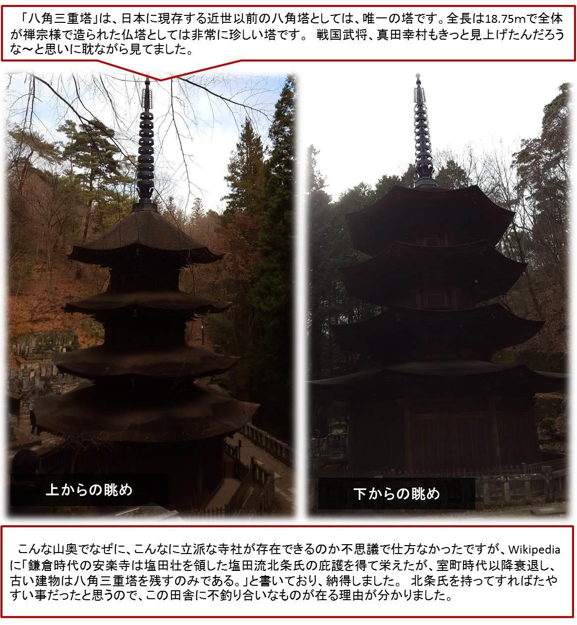 こんな山奥でなぜに、こんなに立派な寺社が存在できるのか不思議で仕方なかったですが、Wikipediaに「鎌倉時代の安楽寺は塩田壮を領した塩田流北条氏の庇護を得て栄えたが、室町時代以降衰退し、古い建物は八角三重塔を残すのみである。」と書いており、納得しました。 北条氏を持ってすればたやすい事だったと思うので、この田舎に不釣り合いなものが在る理由が分かりました。
