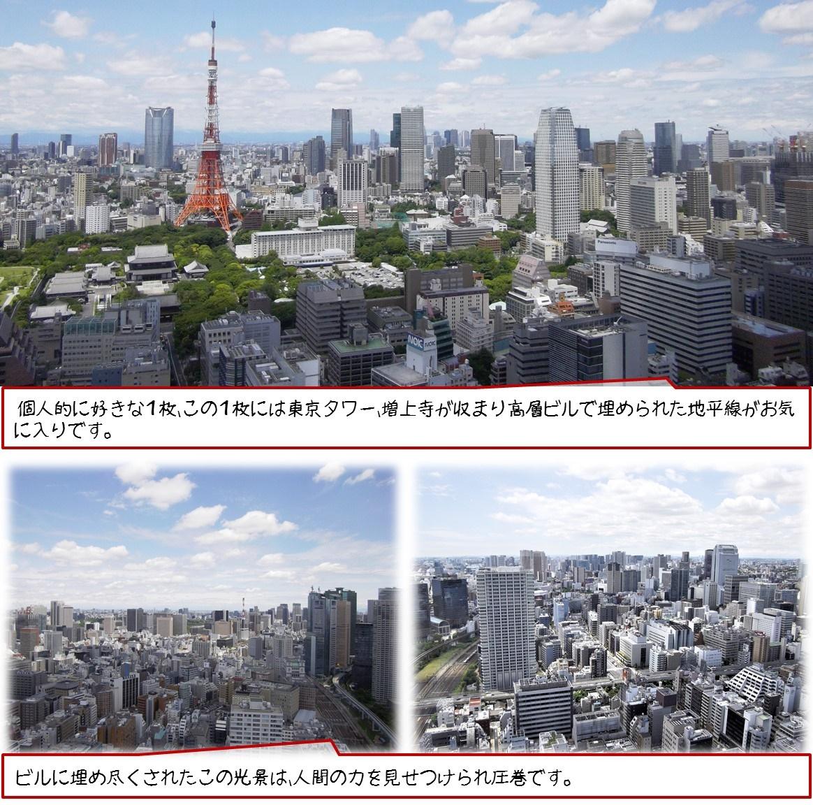 個人的に好きな1枚、この1枚には東京タワー、増上寺が収まり高層ビルで埋められた地平線がお気に入りです。 ビルに埋め尽くされたこの光景は、人間の力を見せつけられ圧巻です。
