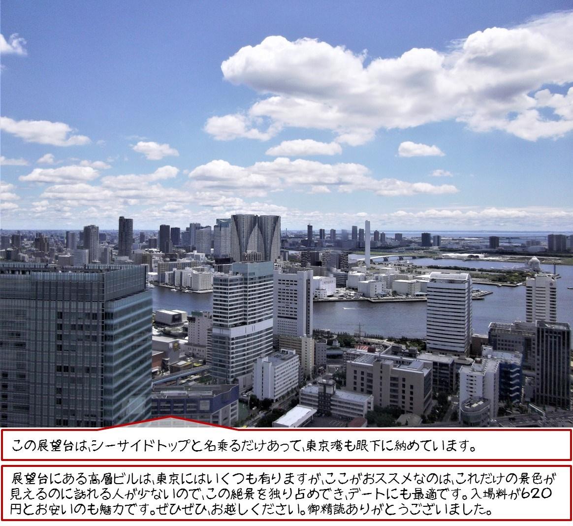この展望台は、シーサイドトップと名乗るだけあって、東京湾も眼下に納めています。 展望台にある高層ビルは、東京にはいくつも有りますが、ここがおススメなのは、これだけの景色が見えるのに訪れる人が少ないので、この絶景を独り占めでき、デートにも最適です。  入場料が620円とお安いのも魅力です。 ぜひぜひ、お越しください。  御精読ありがとうございました。