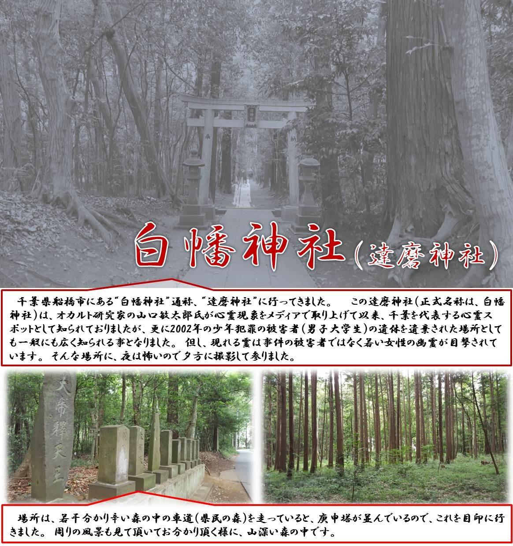 """白幡神社(達磨神社)  千葉県船橋市にある""""白幡神社""""通称、""""達磨神社""""に行ってきました。   この達磨神社(正式名称は、白幡神社)は、オカルト研究家の山口敏太郎氏が心霊現象をメディアで取り上げて以来、千葉を代表する心霊スポットとして知られておりましたが、更に2002年の少年犯罪の被害者(男子大学生)の遺体を遺棄された場所としても一般にも広く知られる事となりました。 但し、現れる霊は事件の被害者ではなく若い女性の幽霊が目撃されています。 そんな場所に、夜は怖いので夕方に撮影して参りました。   場所は、若干分かり辛い森の中の車道(県民の森)を走っていると、庚申塔が並んでいるので、これを目印に行きました。 周りの風景も見て頂いてお分かり頂く様に、山深い森の中です。"""