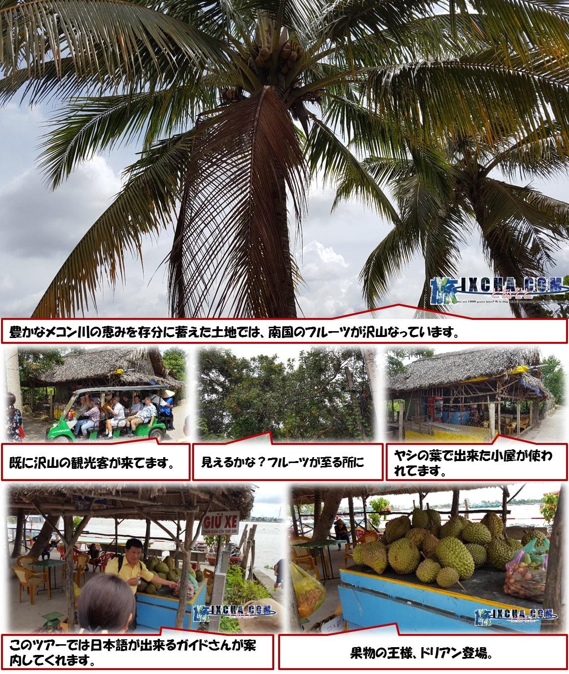 豊かなメコン川の恵みを存分に蓄えた土地では、南国のフルーツが沢山なっています。 既に沢山の観光客が来てます。 見えるかな?フルーツが至る所に ヤシの葉で出来た小屋が使われてます。 このツアーでは日本語が出来るガイドさんが案内してくれます。 果物の王様、ドリアン登場。