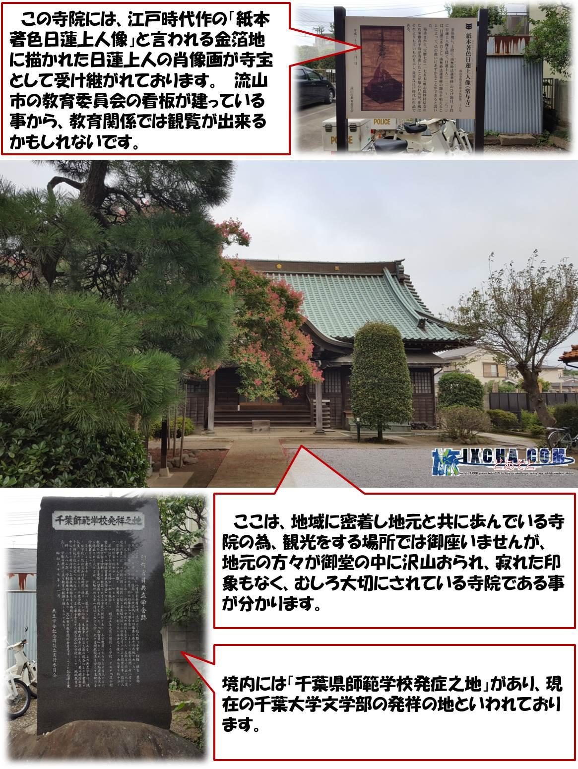 この寺院には、江戸時代作の「紙本著色日蓮上人像」と言われる金箔地に描かれた日蓮上人の肖像画が寺宝として受け継がれております。 流山市の教育委員会の看板が建っている事から、教育関係では観覧が出来るかもしれないです。 ここは、地域に密着し地元と共に歩んでいる寺院の為、観光をする場所では御座いませんが、地元の方々が御堂の中に沢山おられ、寂れた印象もなく、むしろ大切にされている寺院である事が分かります。 境内には「千葉県師範学校発症之地」があり、現在の千葉大学文学部の発祥の地といわれております。