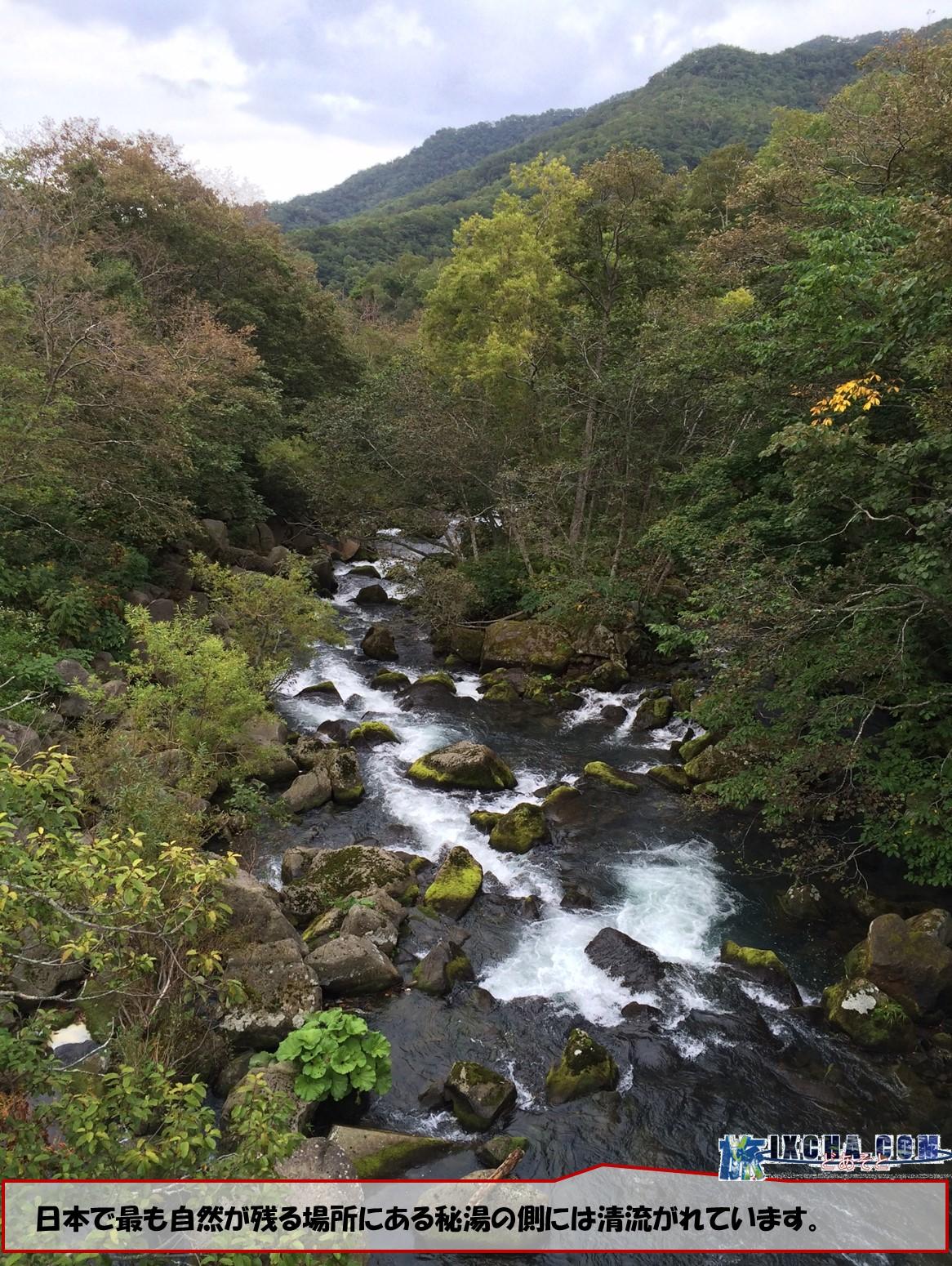 日本で最も自然が残る場所にある秘湯の側には清流がれています。