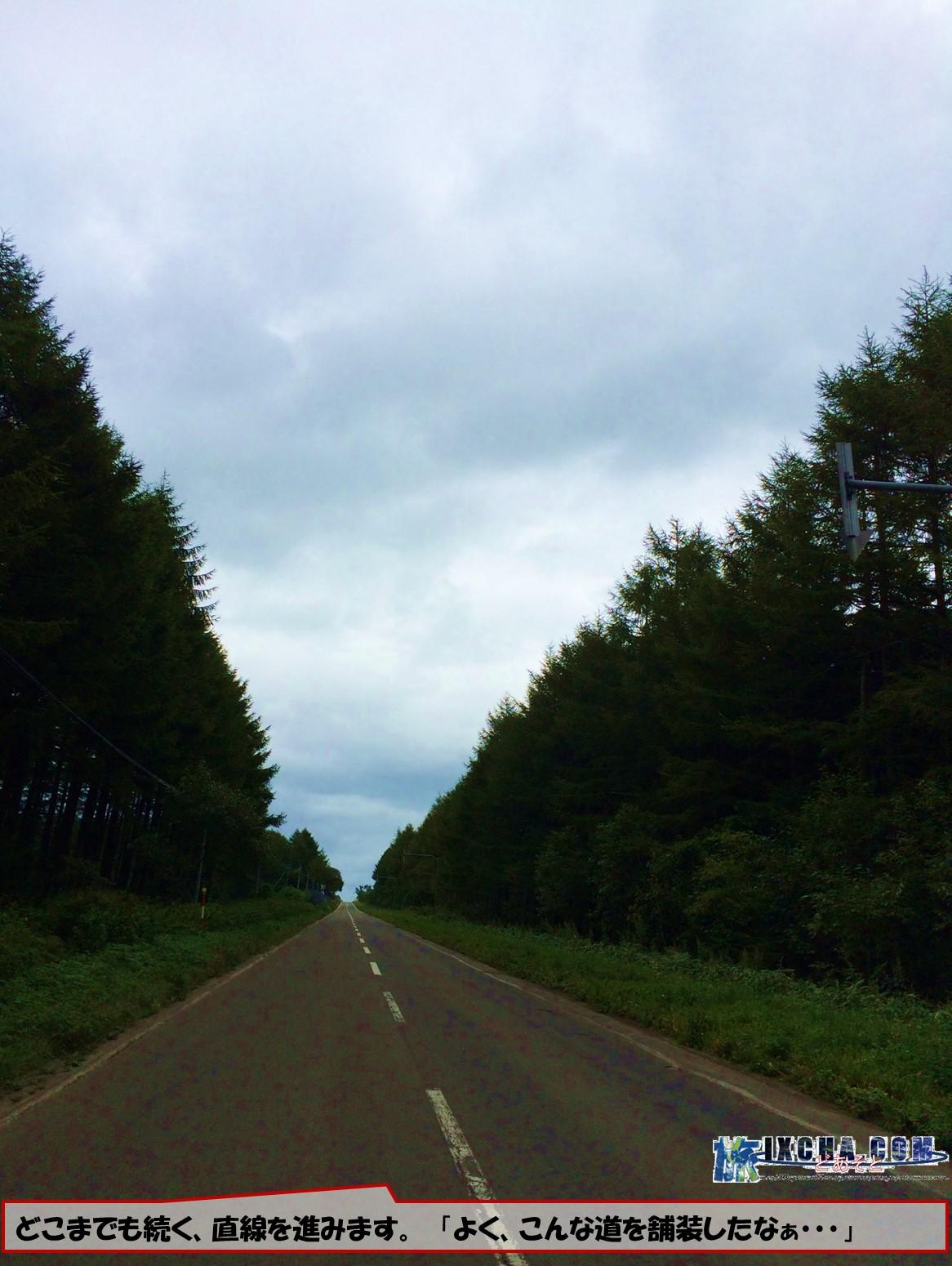 どこまでも続く、直線を進みます。 「よく、こんな道を舗装したなぁ・・・」