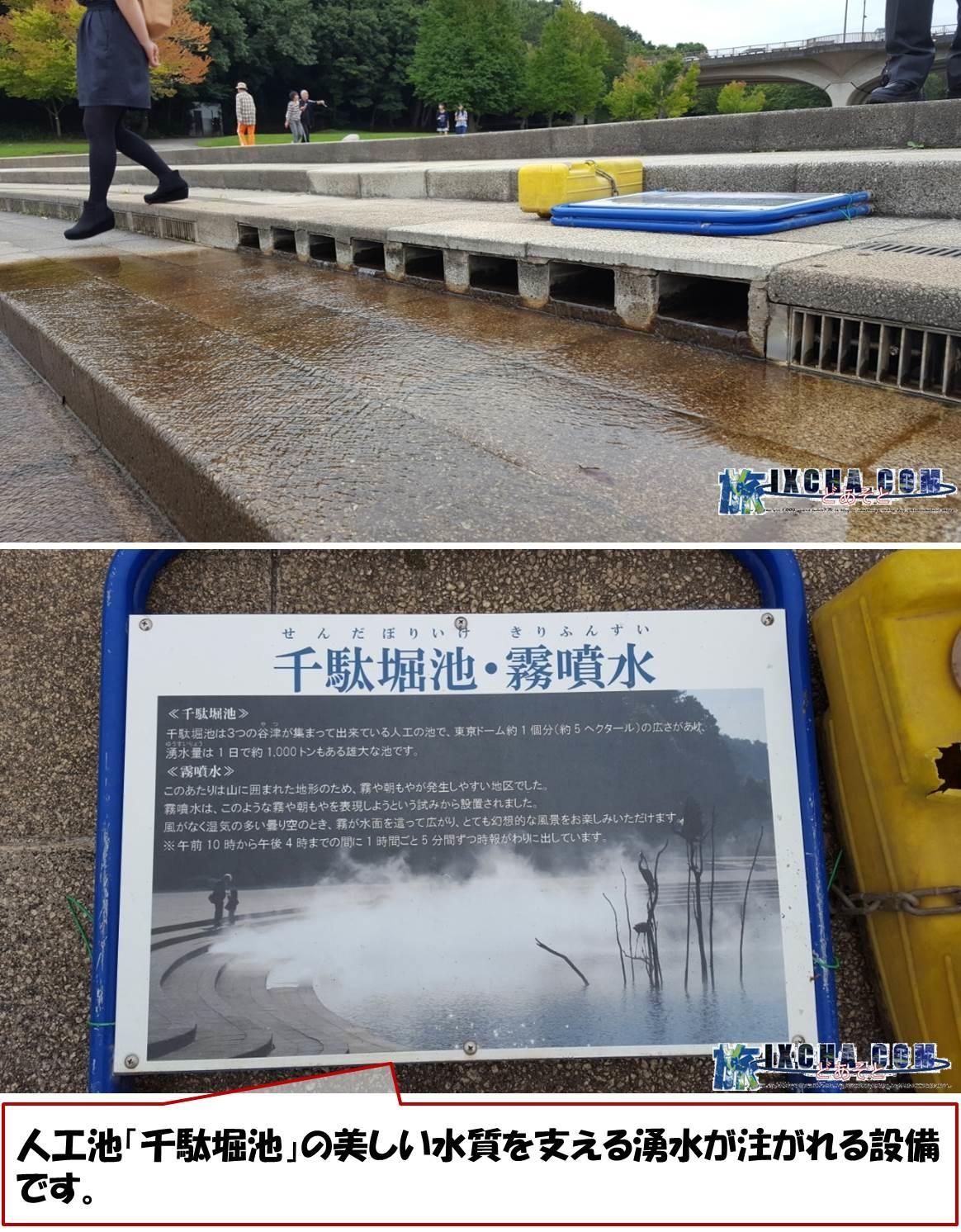 人工池「千駄堀池」の美しい水質を支える湧水が注がれる設備です。