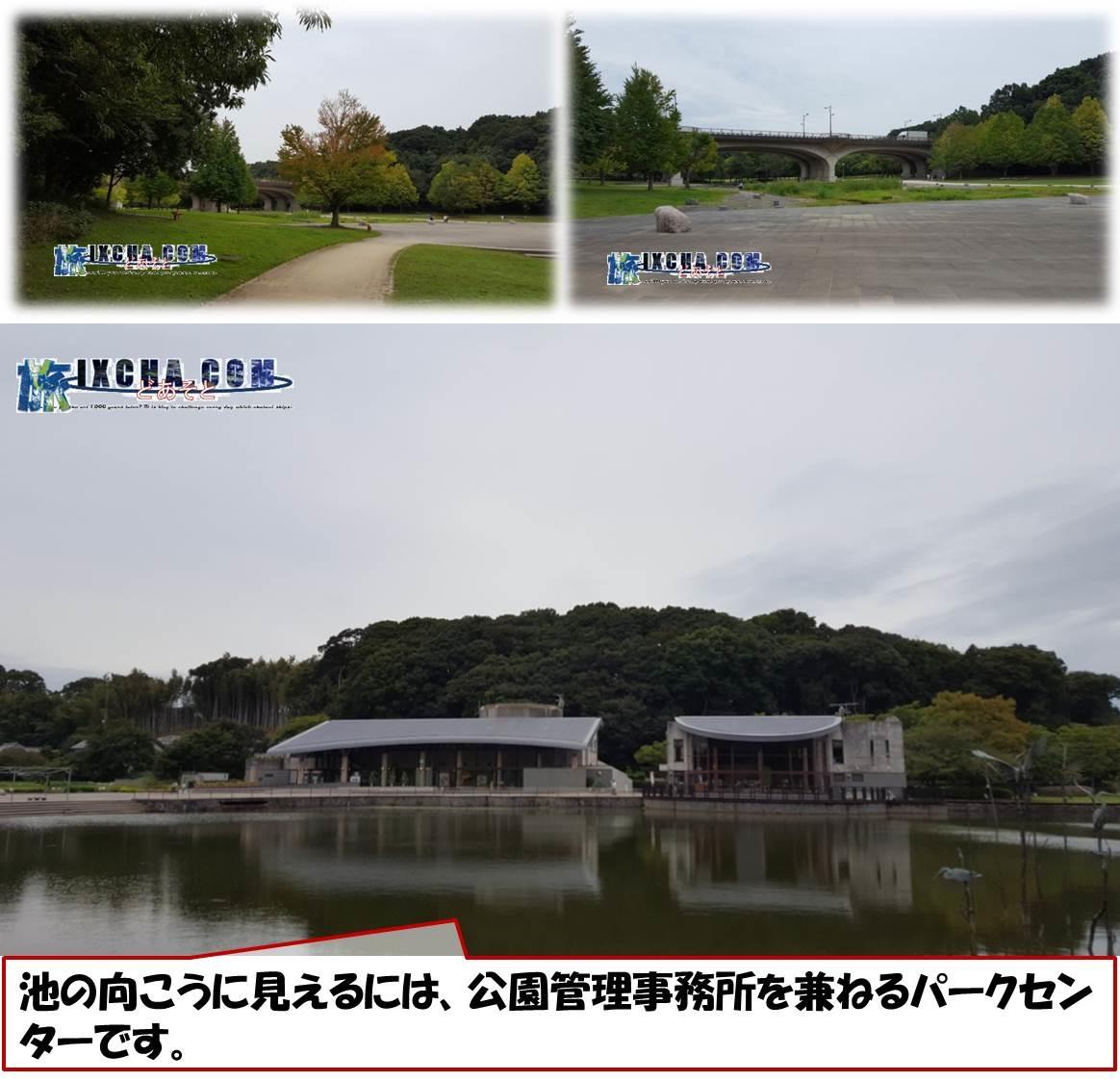 池の向こうに見えるには、公園管理事務所を兼ねるパークセンターです。