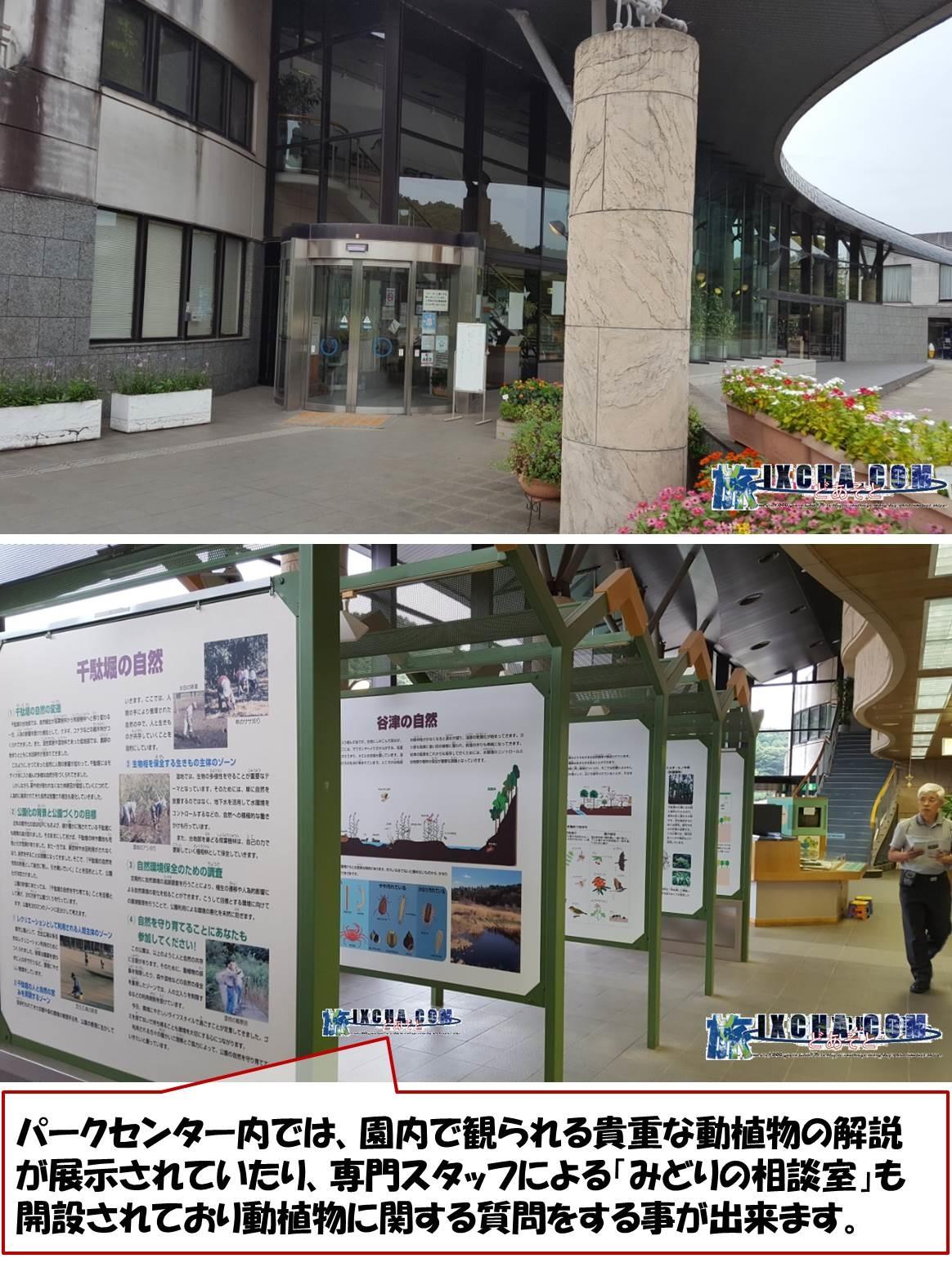 パークセンター内では、園内で観られる貴重な動植物の解説が展示されていたり、専門スタッフによる「みどりの相談室」も開設されており動植物に関する質問をする事が出来ます。