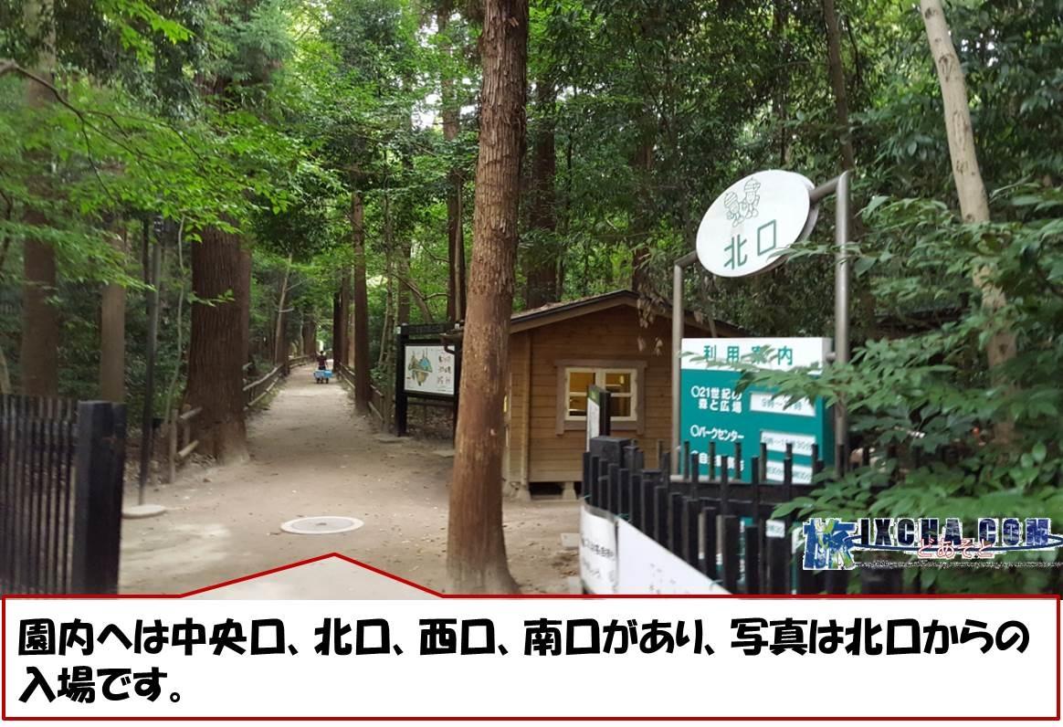 園内へは中央口、北口、西口、南口があり、写真は北口からの入場です。