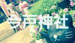 """【写真で観る】浅草にある猫・猫・猫いっぱいの招き猫発祥の地""""今戸神社""""を徹底解説!!"""
