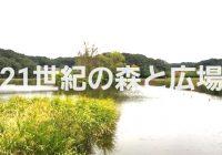 湧水が湧く池と美しい森が楽しい「21世紀の森と広場」を徹底解説!