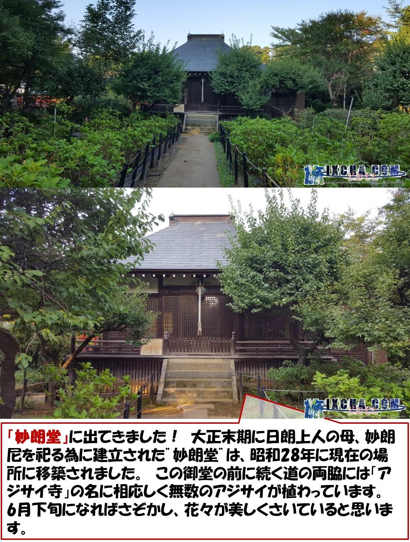 """「妙朗堂」に出てきました! 大正末期に日朗上人の母、妙朗尼を祀る為に建立された""""妙朗堂""""は、昭和28年に現在の場所に移築されました。 この御堂の前に続く道の両脇には「アジサイ寺」の名に相応しく無数のアジサイが植わっています。 6月下旬になればさぞかし、花々が美しくさいていると思います。"""