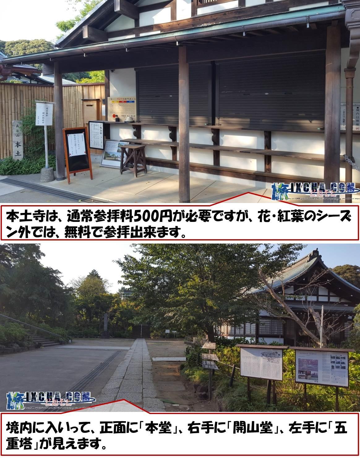 本土寺は、通常参拝料500円が必要ですが、花・紅葉のシーズン外では、無料で参拝出来ます。 境内に入いって、正面に「本堂」、右手に「開山堂」、左手に「五重塔」が見えます。