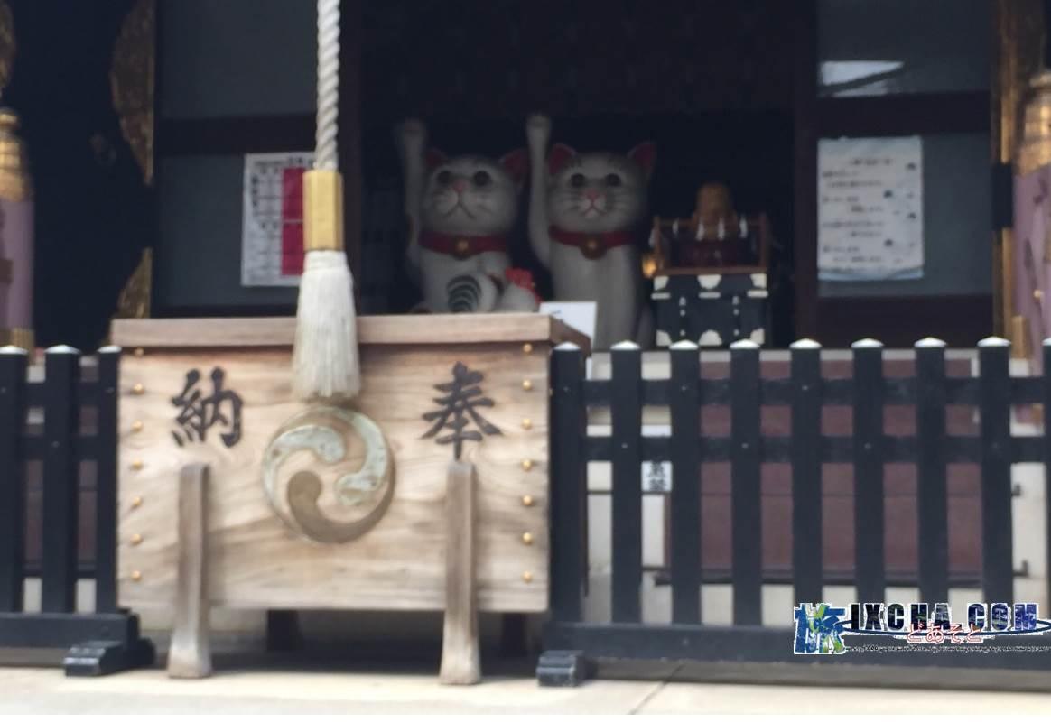 境内に入って直ぐ右手の本殿があり、付近には招き猫にまつわる猫の人形、ジョウロ等 猫 猫 猫 が可愛らしいです。