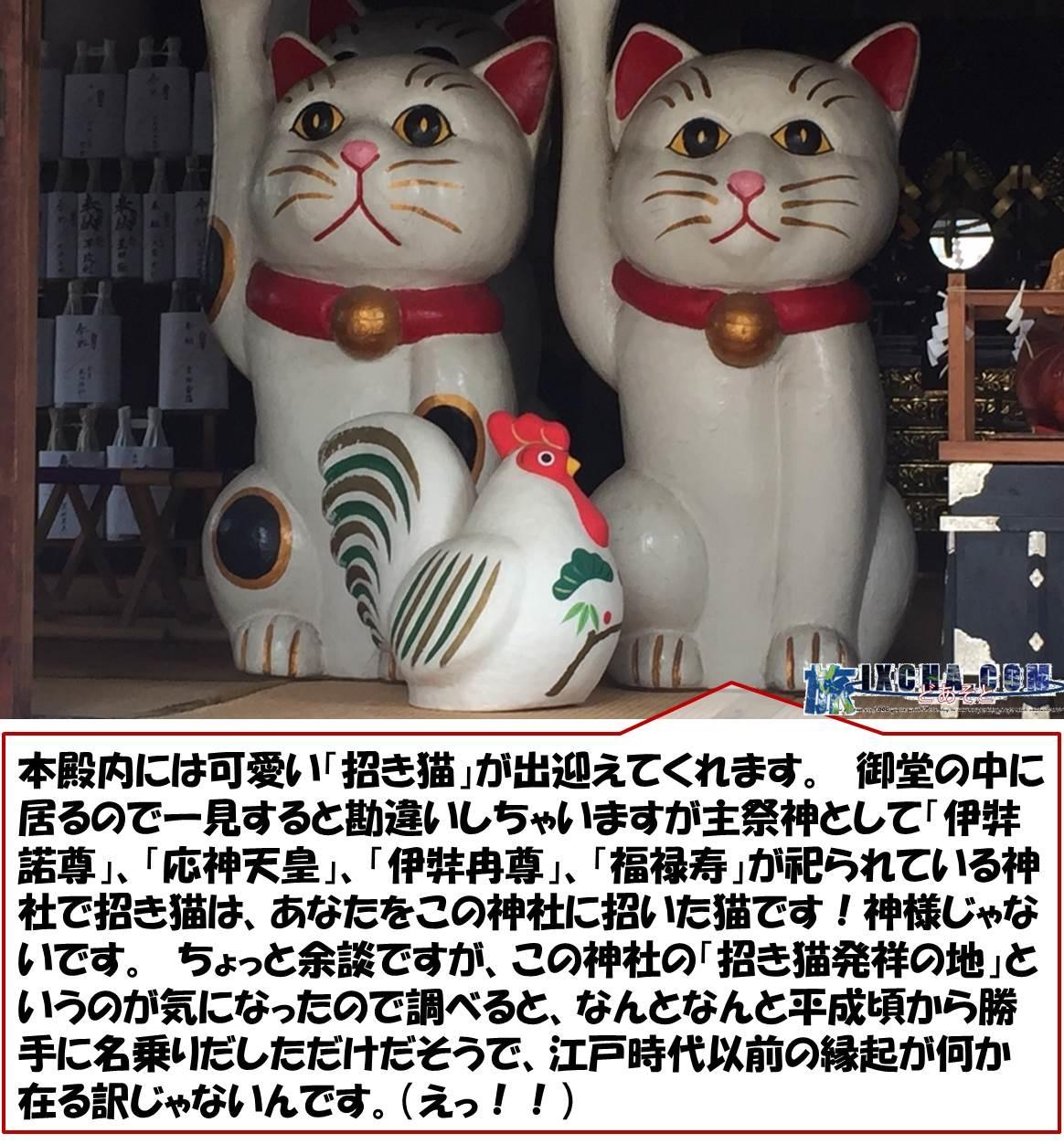 本殿内には可愛い「招き猫」が出迎えてくれます。 御堂の中に居るので一見すると勘違いしちゃいますが主祭神として「伊弉諾尊」、「応神天皇」、「伊弉冉尊」、「福禄寿」が祀られている神社で招き猫は、あなたをこの神社に招いた猫です!神様じゃないです。 ちょっと余談ですが、この神社の「招き猫発祥の地」というのが気になったので調べると、なんとなんと平成頃から勝手に名乗りだしただけだそうで、江戸時代以前の縁起が何か在る訳じゃないんです。(えっ!!)