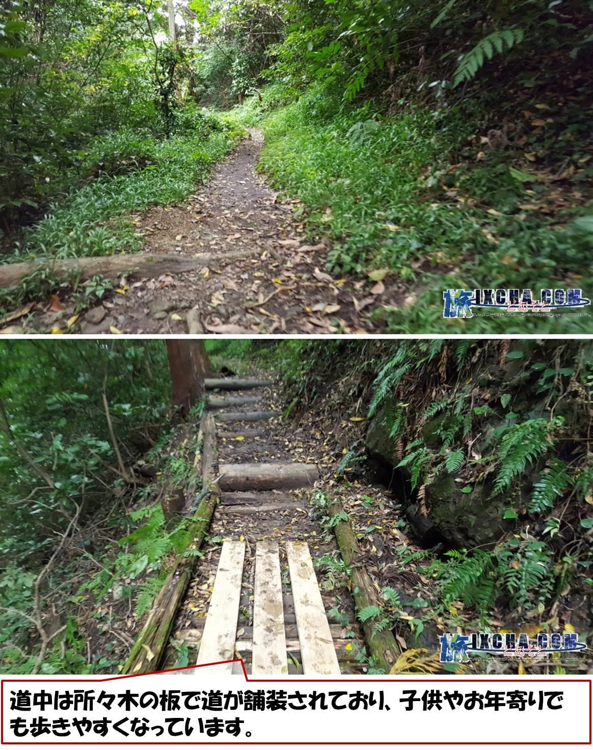 道中は所々木の板で道が舗装されており、子供やお年寄りでも歩きやすくなっています。