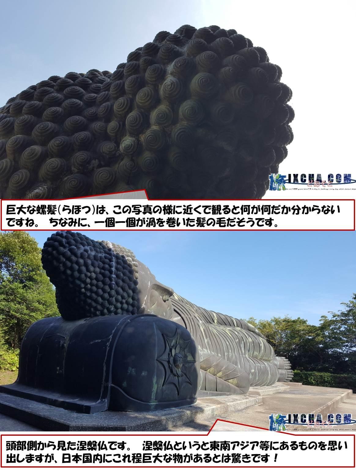 巨大な螺髪(らほつ)は、この写真の様に近くで観ると何が何だか分からないですね。 ちなみに、一個一個が渦を巻いた髪の毛だそうです。 頭部側から見た涅槃仏です。 涅槃仏というと東南アジア等にあるものを思い出しますが、日本国内にこれ程巨大な物があるとは驚きです!