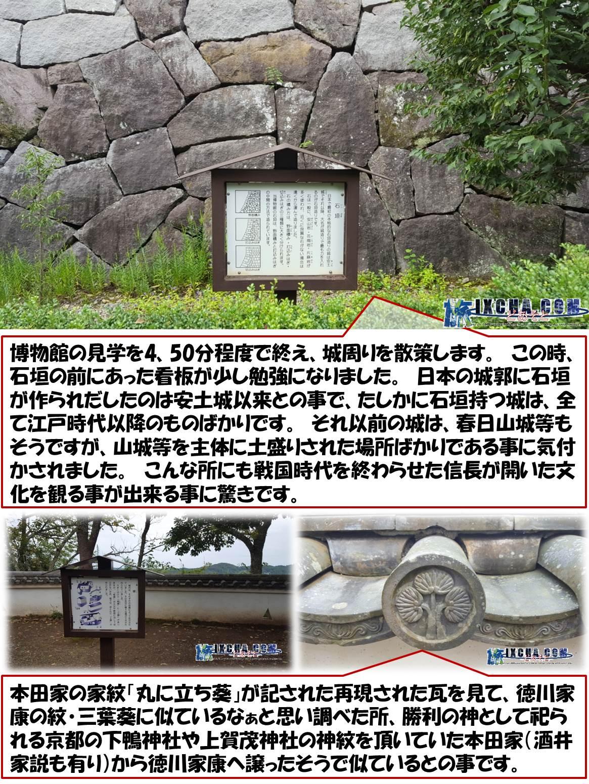 博物館の見学を4、50分程度で終え、城周りを散策します。 この時、石垣の前にあった看板が少し勉強になりました。 日本の城郭に石垣が作られだしたのは安土城以来との事で、たしかに石垣持つ城は、全て江戸時代以降のものばかりです。 それ以前の城は、春日山城等もそうですが、山城等を主体に土盛りされた場所ばかりである事に気付かされました。 こんな所にも戦国時代を終わらせた信長が開いた文化を観る事が出来る事に驚きです。 本田家の家紋「丸に立ち葵」が記された再現された瓦を見て、徳川家康の紋・三葉葵に似ているなぁと思い調べた所、勝利の神として祀られる京都の下鴨神社や上賀茂神社の神紋を頂いていた本田家(酒井家説も有り)から徳川家康へ譲ったそうで似ているとの事です。
