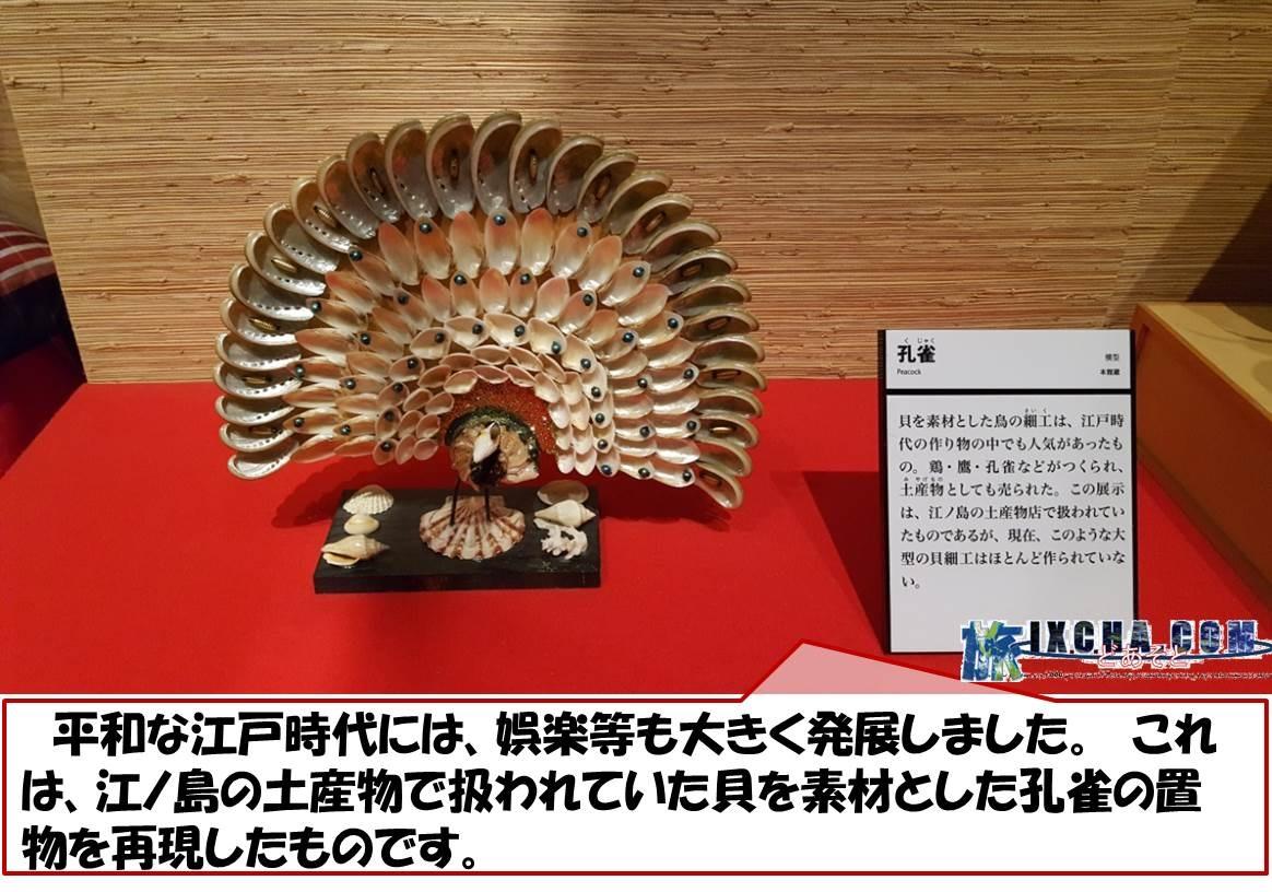 平和な江戸時代には、娯楽等も大きく発展しました。 これは、江ノ島の土産物で扱われていた貝を素材とした孔雀の置物を再現したものです。