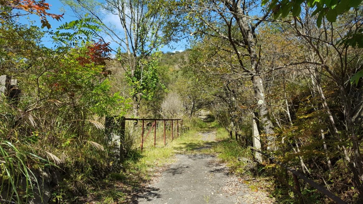 落石等により道が悪い道路を山に向けて進むと「本山鉱山神社」の入り口が見えました!この道を徒歩で進むと神社があるのですが、この日は誰も居らず徒歩で上に進むのは大変そうなのでここまでで引き返します。