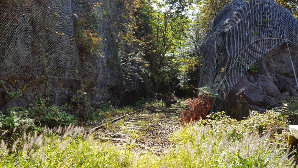 踏切を中心に、もう片方の線路は山に向けて線路が向かっていますが所々に落石が目立っており崩落が進んでいると思われました。