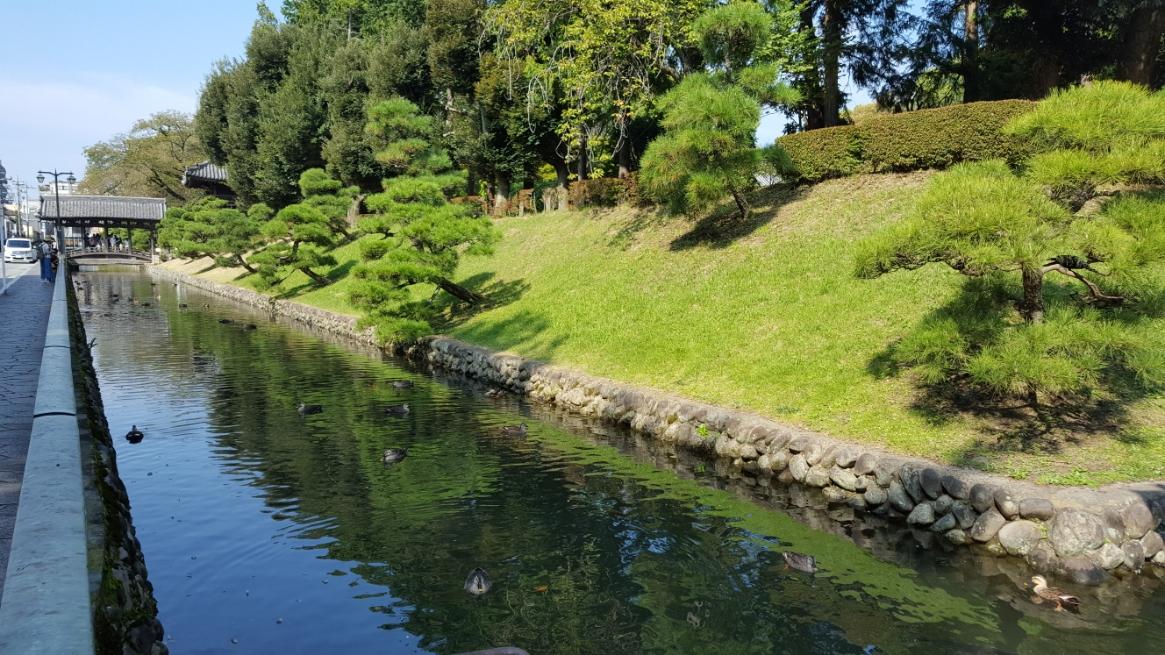 以上で「鑁阿寺」の御案内となります。 鎌倉時代から室町時代にかけ栄枯衰退をしながら、日本の歴史にその名を刻んだ足利氏の足跡が、この寺には残っています。 寺院としての魅力、日本の古城としての魅力を一度に二度味わえるこの地は何度訪れても飽きることない魅力に溢れた場所です。 皆様も一度訪れては如何でしょうか。 最後に寺院を囲む御堀をご覧頂きながらお別れいたします。 御精読有難うございました。