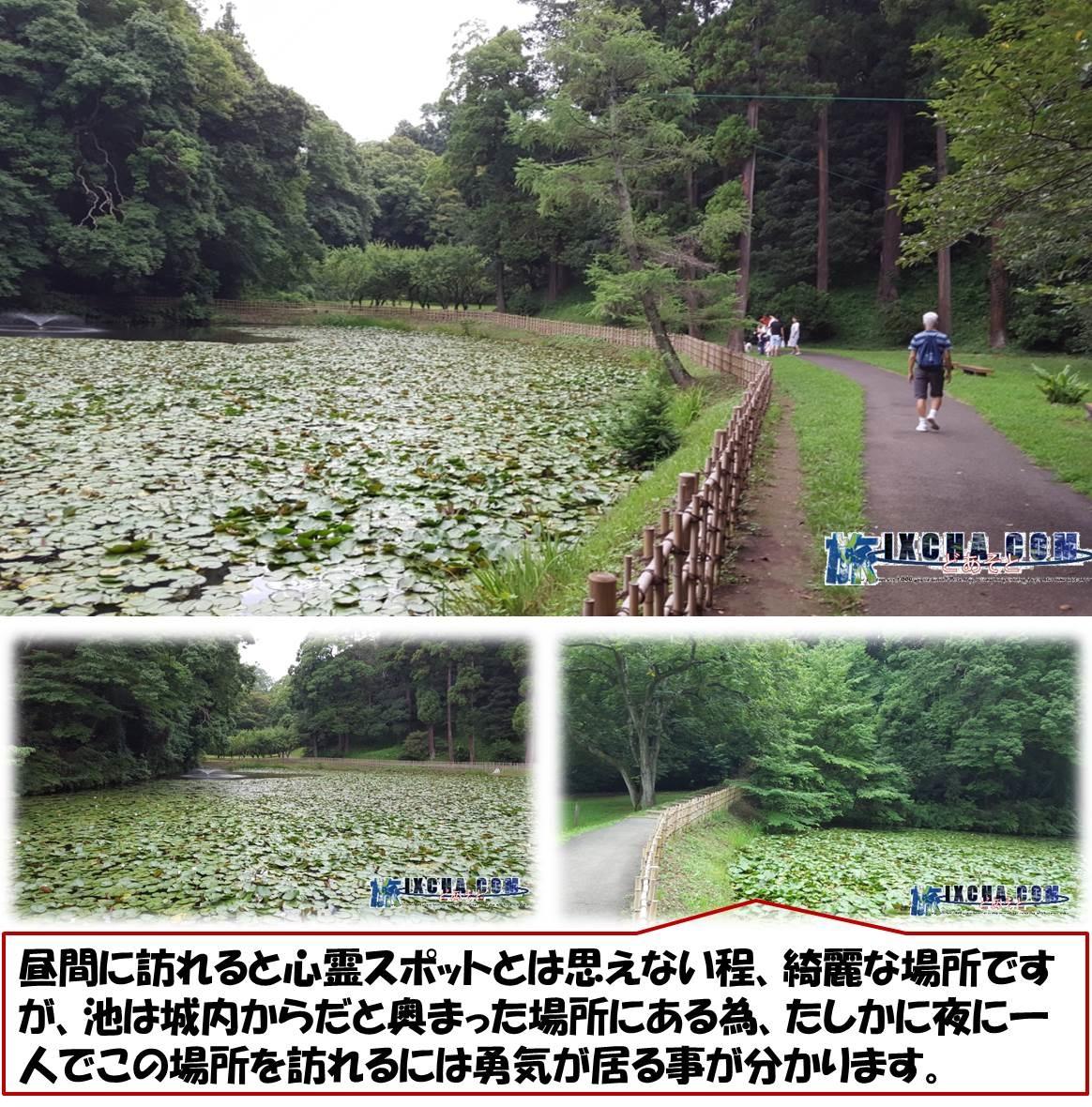 昼間に訪れると心霊スポットとは思えない程、綺麗な場所ですが、池は城内からだと奥まった場所にある為、たしかに夜に一人でこの場所を訪れるには勇気が居る事が分かります。