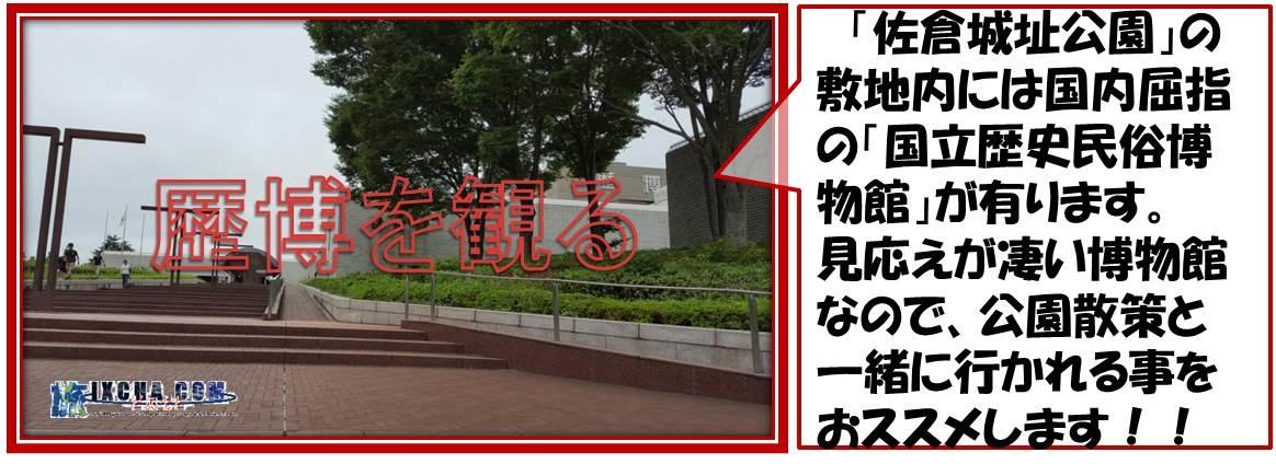 「佐倉城址公園」の敷地内には国内屈指の「国立歴史民俗博物館」が有ります。 見応えが凄い博物館なので、公園散策と一緒に行かれる事をおススメします!!
