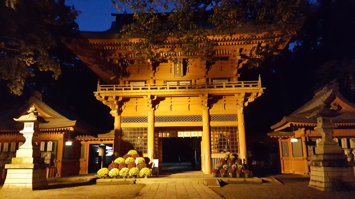 夜に訪れると「楼閣」がライトアップされており、また違った見ごたえがあります!