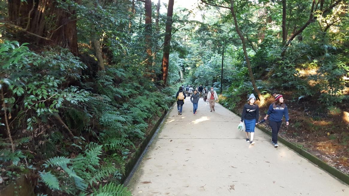 「要石」の参拝後、来た道を「奥宮」まで引き返し「御手洗池」の見学に、山を下りて行きます。