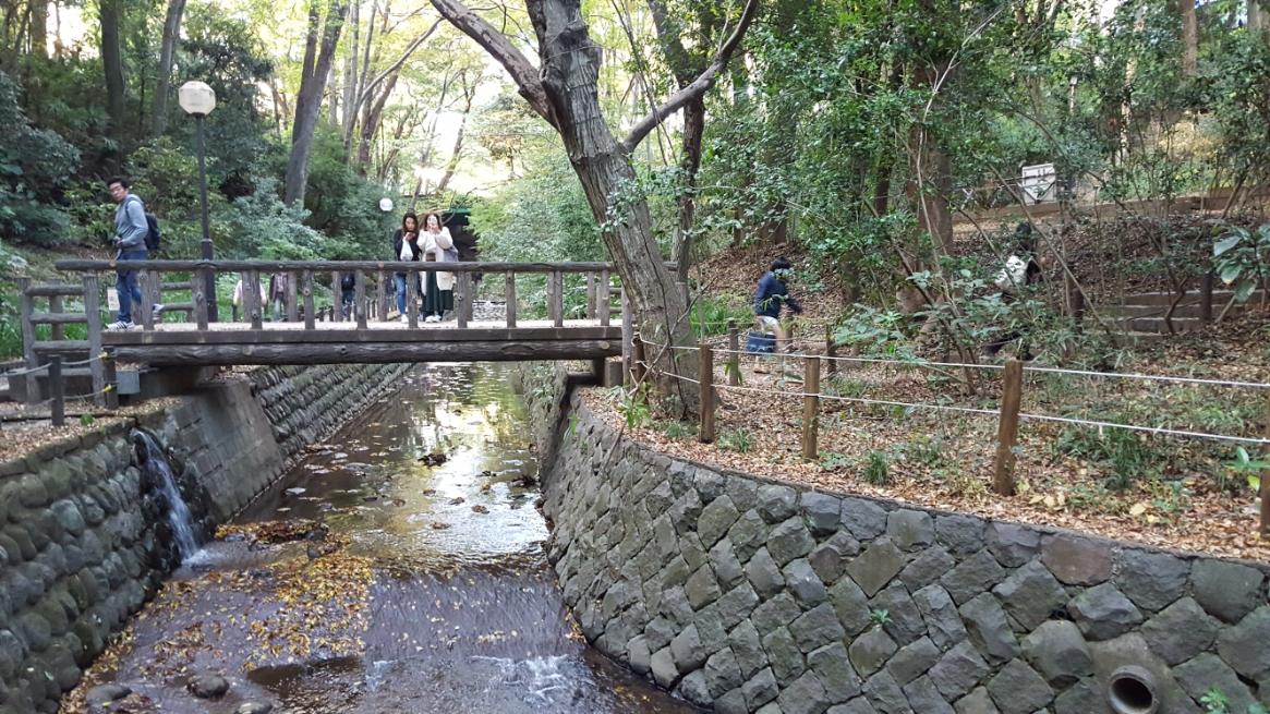 橋わたりーのー(ヾノ・ω・`)