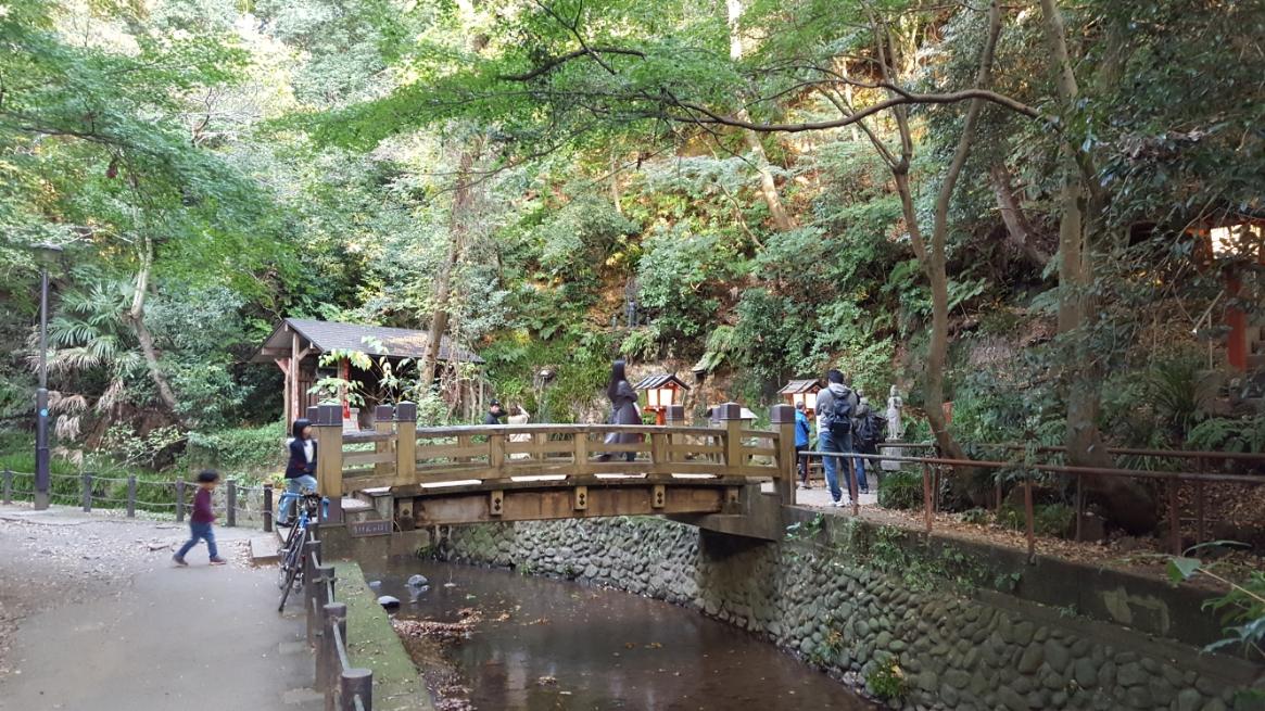 趣ある木の橋を渡って滝の見学に向かいます。