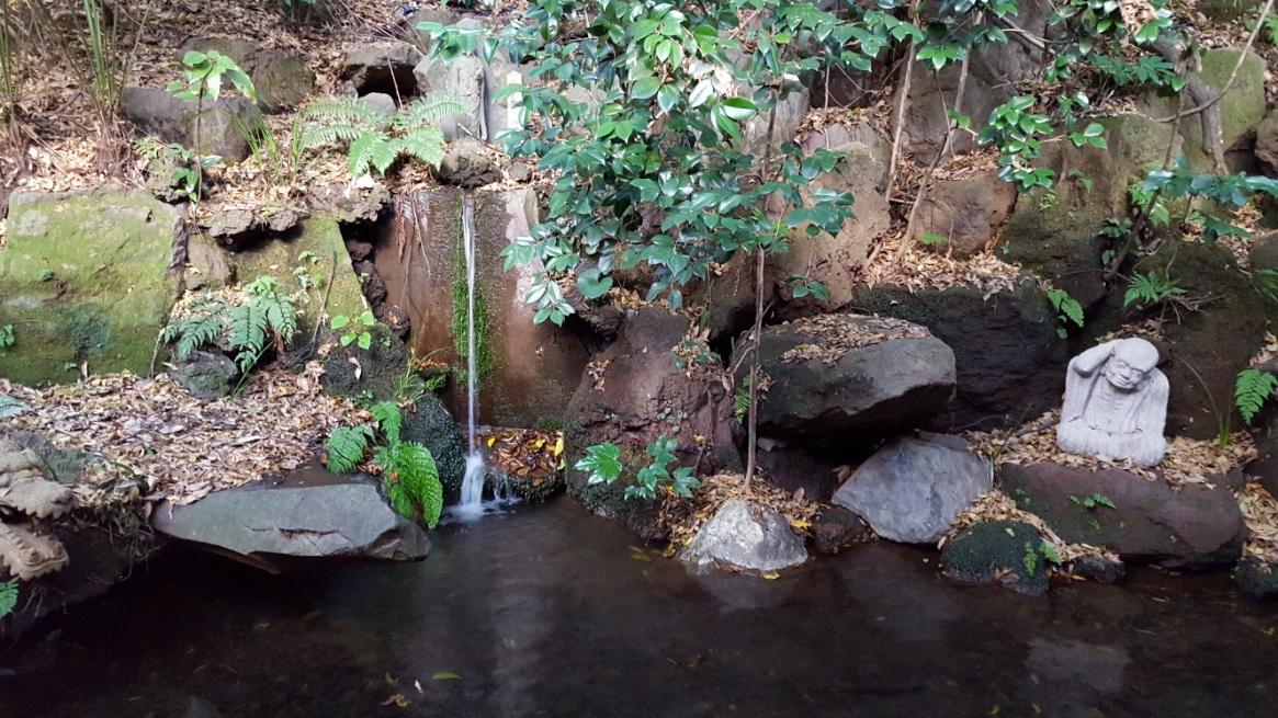 等々力渓谷の中で飲食出来るのは、この場所だけですので結構繁盛されており、注文してから出来るまでの間に茶屋内にある小さな池の滝を見て過ごします。