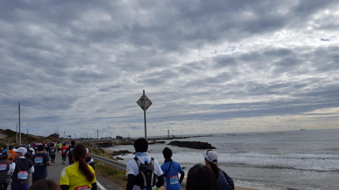 写真を御覧頂いてお分かり頂けるように「銚子さんまマラソン」の魅力は、なんといってもこの海沿いを走る爽快さです! あと個人的には風が強いので体のヒートアップを抑えてくれるのも有り難かったです!