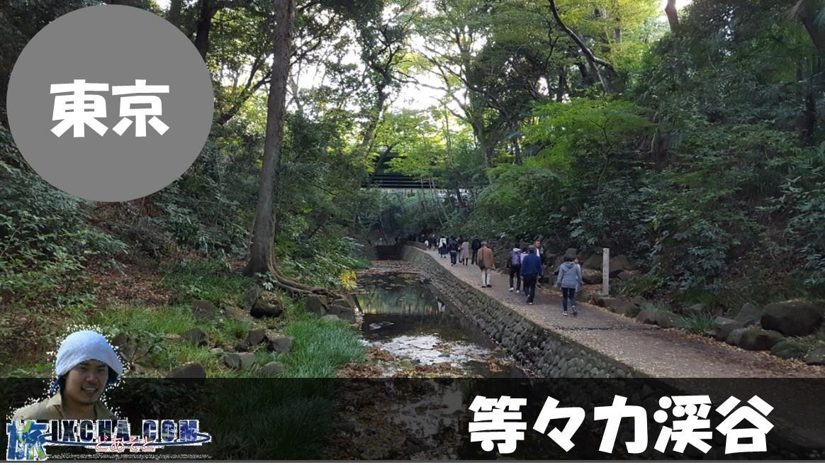 東京都世田谷区にある23区内で唯一の自然豊かな渓谷とされる「等々力渓谷」にやってきました!!23区の世田谷にそんな場所があるなんて知らない方が多いんじゃないでしょうか!? かくいう私も東京に住んでいた時に東京都道311号環状八号線(通称、環八)の側を自転車で走行していた時に、「何やら道の下に自然が豊富そうな場所があるなぁ」といった程度の認識だったのでノーマークだったのですが、ちらっと見学に行くと、都内に在るとは考えもしなかった空間が広がっていました!