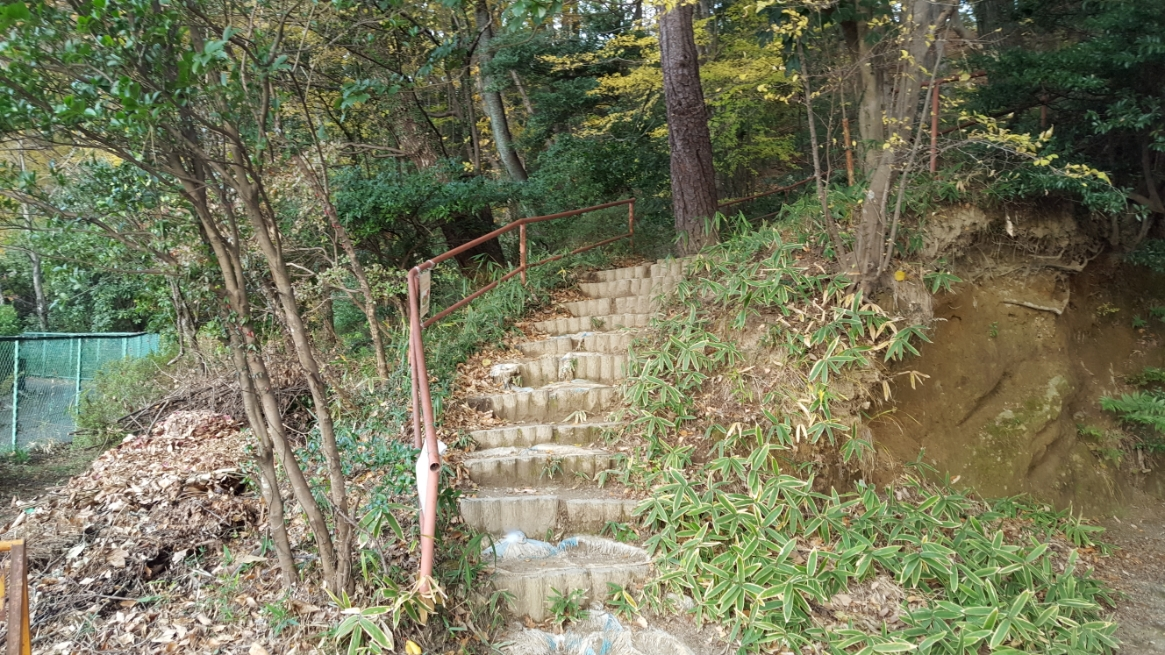 地下道を通り抜けた私は、この岩山の頂上から「吉見百穴」を見学する為に小登山します。