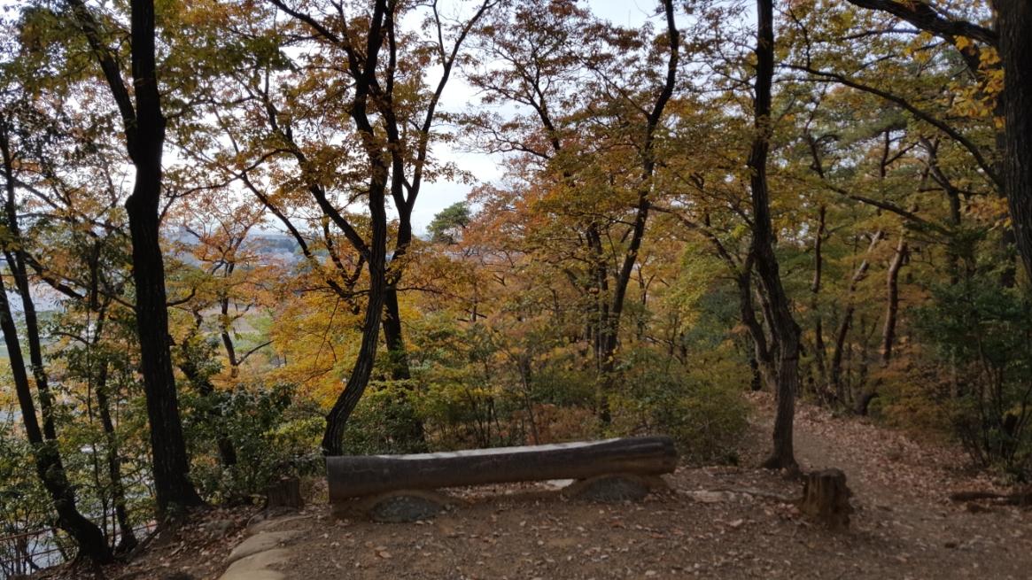 頂上から見た風景です。 写真では木々が邪魔を見えにくいですが現地でも当然見えにくかったです。 ここまでの途中には「墓穴」が一切無かったので、恐らく墓穴は岩山の特定の一面にのみ作られている事が分かります。
