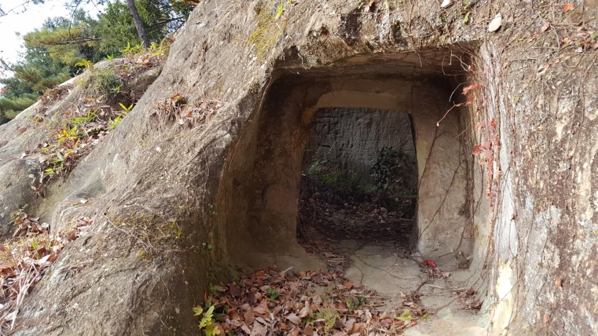 では、穴の中を観てみます!