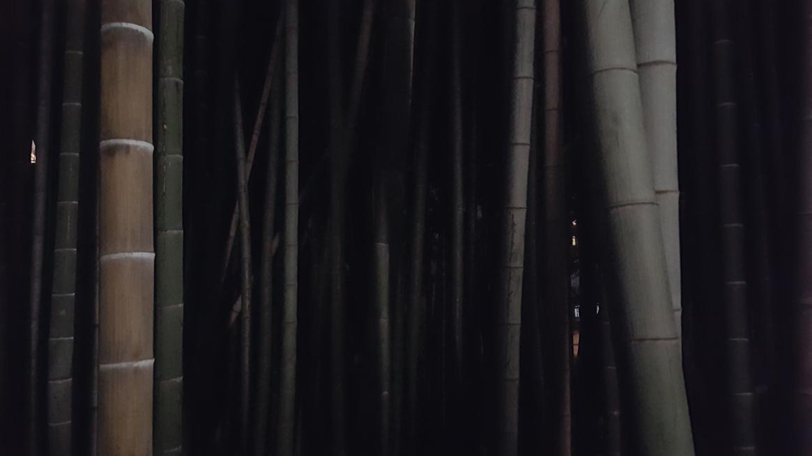 石囲いの中には、恐ろしくて入れないですが非常に鬱蒼としております。 今では、竹に覆われた「八幡の藪知らず」ですが、調べた所によると近年まで松や杉、栗の木といった木々が茂っていたそうです。