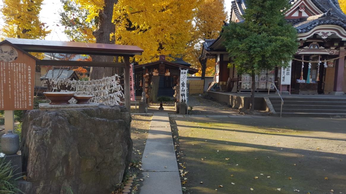そして、今回のメインの「金山神社」に参ります!