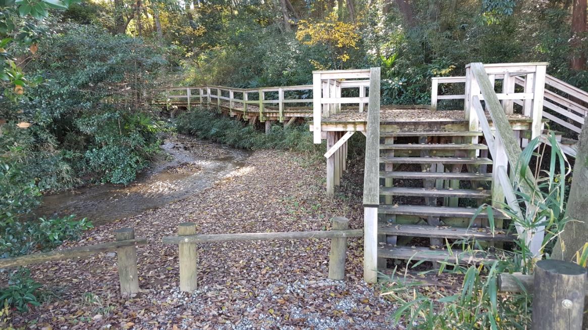 ここから「妙音沢」を踏み荒らさないように作られた遊歩道を進み、湧き出る地点を目指します。