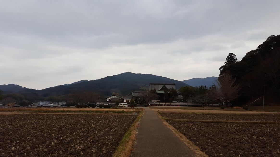 私にとって飛鳥京は、自転車でサイクリングするのに最も楽しい場所の一つです! 今回は、その為にわざわざ自転車を購入してから訪れると言う気合の入った観光となりました。 歴史溢れる飛鳥の小道を自転車で軽快に散策するのは非常に楽しいです!