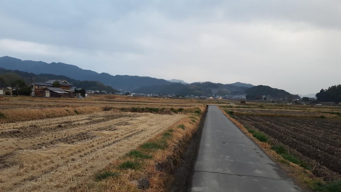 これから蘇我氏と蘇我入鹿についてお話いたしますが、日本史のキーマンともなるも乙巳の変で討たれた蘇我入鹿首塚は畑の広がる寂しい場所にあります。