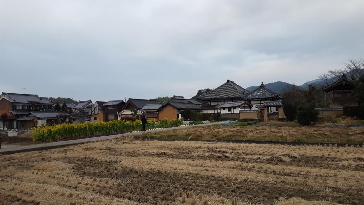 現代の飛鳥寺とは少し離れておりますが、一応境内の外れとなっております。 では、『蘇我入鹿首塚』を観ながら背景等をお話しいたします。