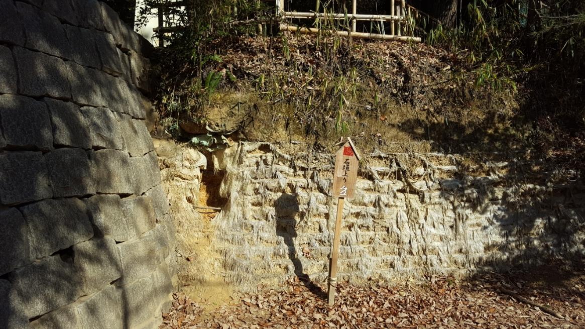 ここから、立派な忍者になれるように写真の石垣越えをはじめ様々な厳しい修行を行います!元日の朝っぱらから・・・