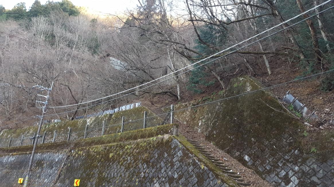 「三頭山口駅(みとうさんぐち)」まで続く階段が道路沿いにあるのが直ぐに分かりました! ここで、分かりづらければ入るのも躊躇ってしまう程の自然豊富な場所ですが、安心して進むことが出来ます。