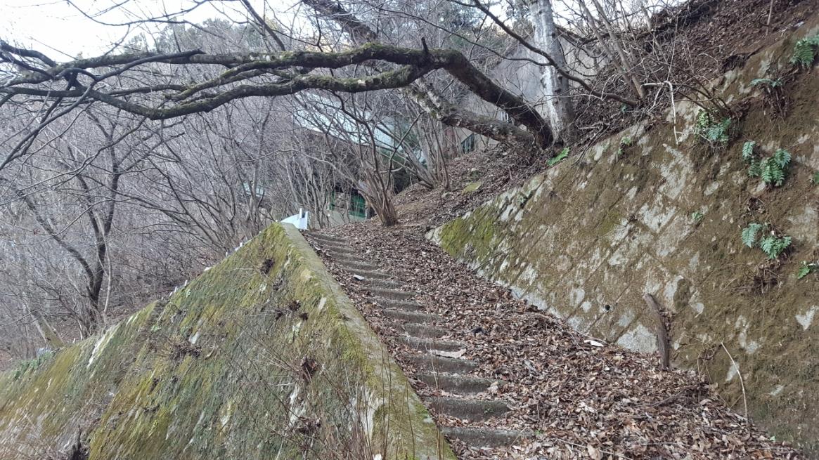 コンクリート製の石段の上に積もった落ち葉が滑り転げ落ちそうにもなりつつ進みます。 ここで転げ落ちると正直無事には済まないであろと思われますので、自己責任で進んでください。 イメージは石段から転げ落ち、下の道路のアスファルトに叩き付けられれば確実に死にますね!