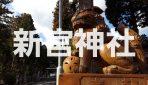 【写真で観る】信楽散策ならココも行こう!1300年前から滋賀県甲賀市信楽に鎮座する「新宮神社」を徹底解説!!