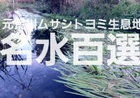 埼玉県熊谷市の平成の名水百選「元荒川ムサシトヨミ生息地」を解説